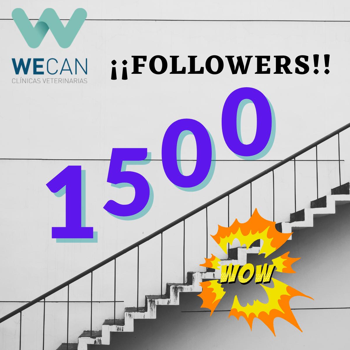 Celebración por los 1.500 seguidores en LinkedIn